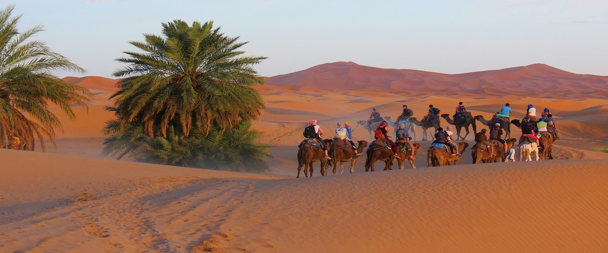 3-day Desert Tour – Marrakech to Fes | Shared & Private