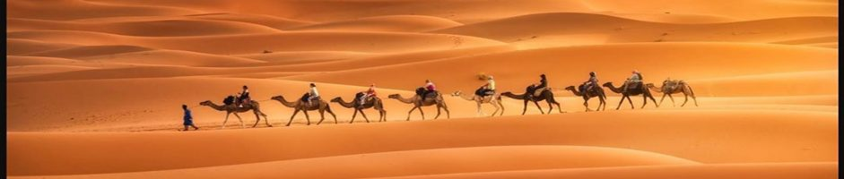 Best Small Group desert Tours & Marrakech to Fes